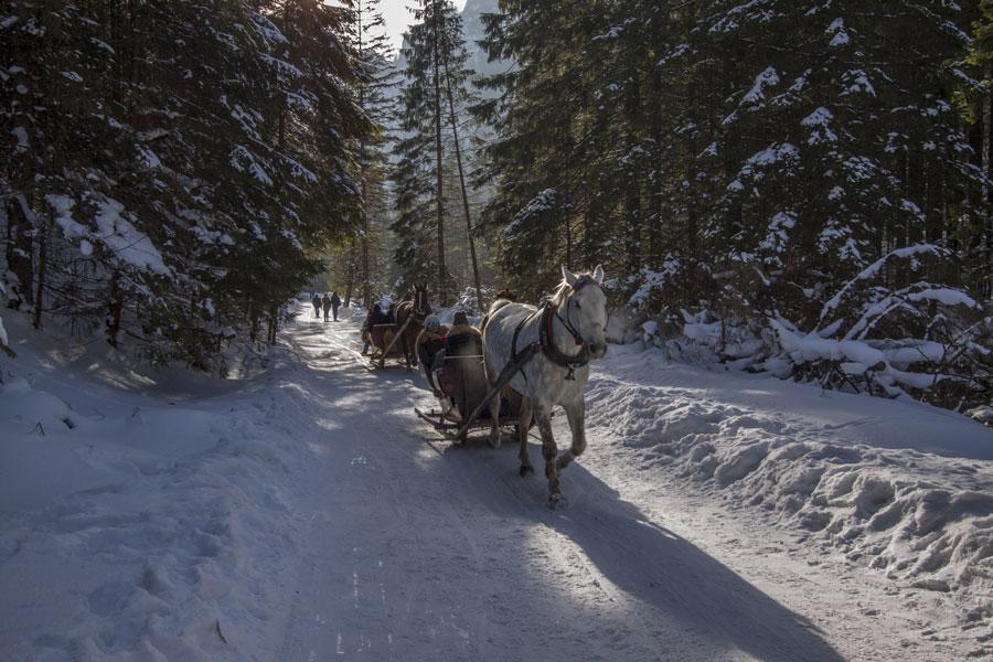 kulig w Tatrach